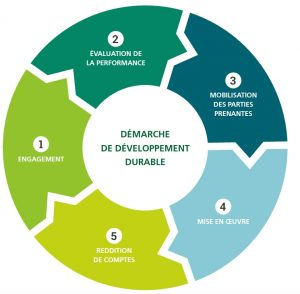 les-5-etapes-dune-demarche-dd